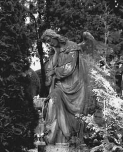 Jeden z kamenných andělů na jihlavském ústředním hřbitově...